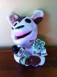 petsdotcom sock puppet