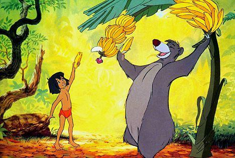 bear-necessities